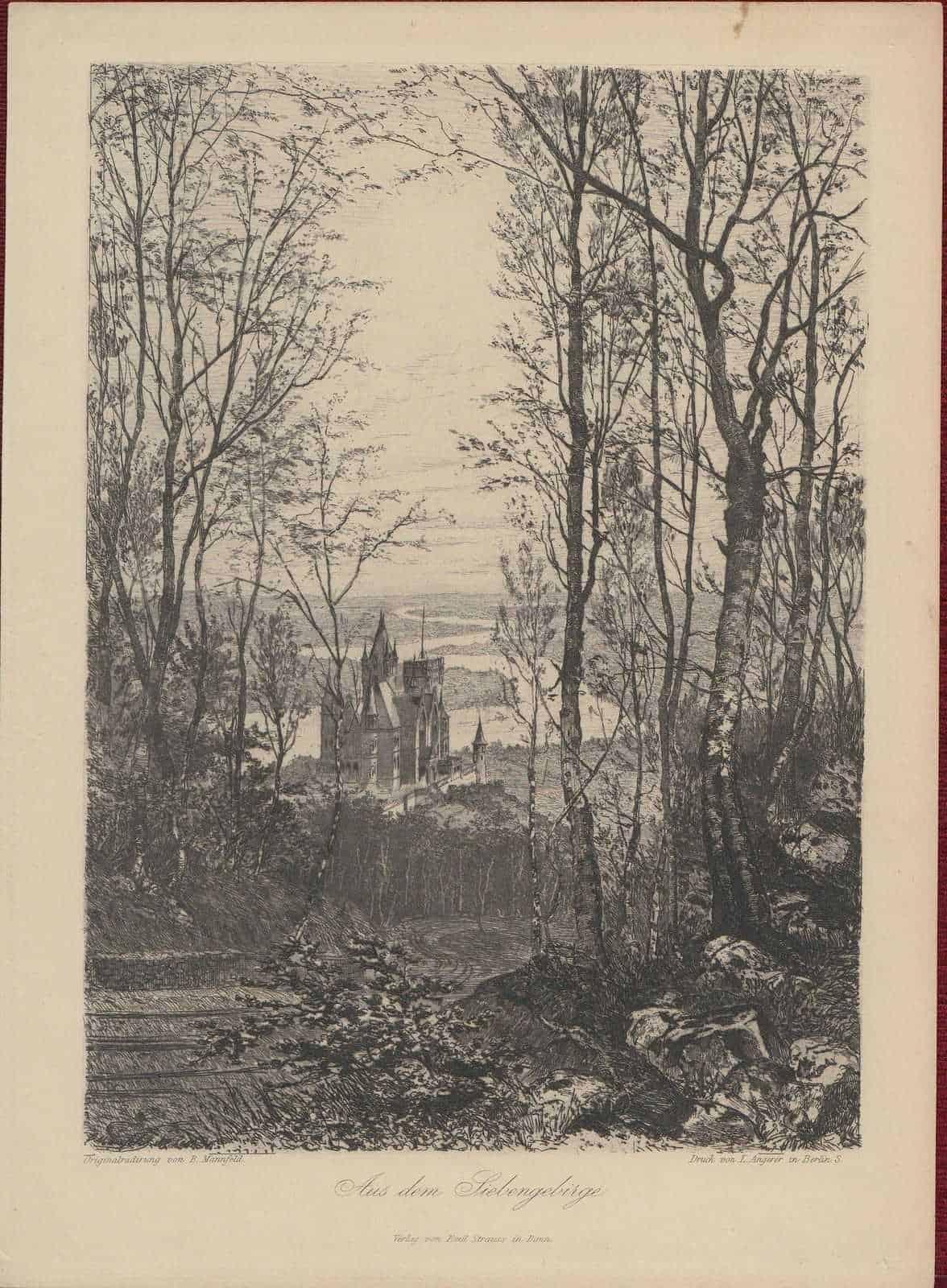 1885-Copperplate-Engraving-Siebengebirge-National-Park-Germany-Bernhard-Mannfeld-182181555132-2