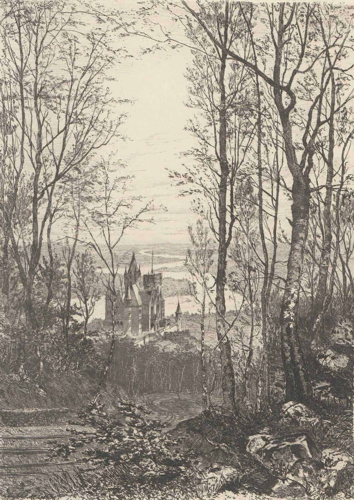 1885-Copperplate-Engraving-Siebengebirge-National-Park-Germany-Bernhard-Mannfeld-182181555132
