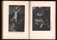 1913-Paul-Rubens-Verhaeren-Germany-Art-Painting-Baroque-Biography-Study-401140307982-6